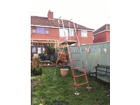 HENCHMAN Hi Step Senior Foldable High platform ladder to enable trimming up to 12' high hedges and