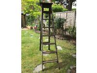 Large Vintage Ladder