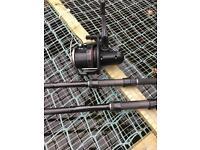 Daiwa carp Rods plus reel