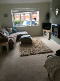 Beautiful Double Room available to Rent - Kings Heath