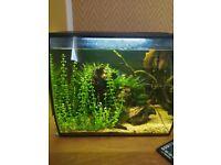 Fish tank Aquarium 34 l