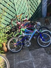 Selection of small bikes