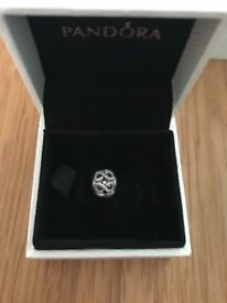 Pandora Essence Dedication charm New