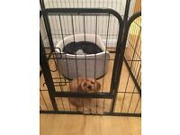 Puppy Crate / Play Pen