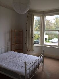 Beautiful 4 bedroom Victorian house available 1st September