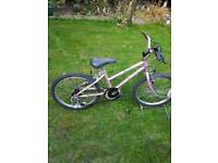 Childs Raleigh pink mountain bike, age groups 7 to 9