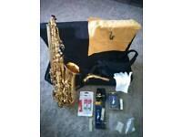 Alto Saxophone outfit
