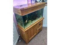 Maidenhead Aquatic 200L Fish Tank + 7 fish