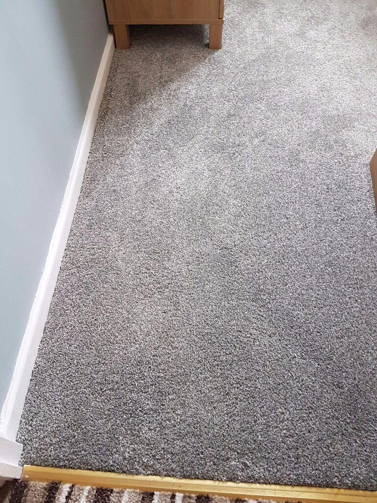 Brand New Scs Malibu Carpet 196 X 293 In Ilkeston