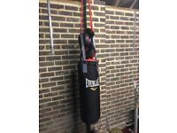 Everlast Boxing bag ,gloves and pads