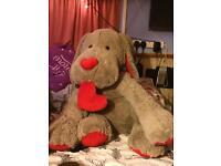 Giant dog teddy £5!!