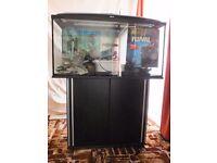complete 200 litre aquarium set up for sale