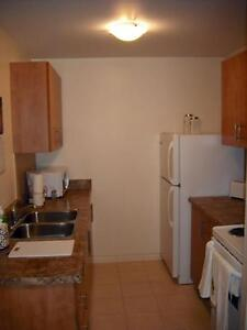 Blossom Gate - 1 Bedroom Apartment for Rent London Ontario image 8