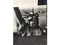 Lady liberty New York canvas