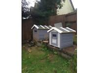 Animal Sheds Chicken Coop