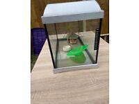 Fishtank for sale