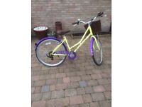 Dawes bike great condition £120