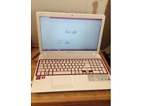 Packard bell easy note