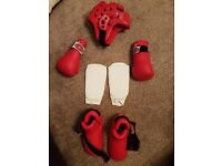 Gold Star Martial Arts pads