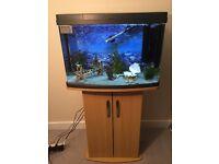 64 liter panorama fish tank