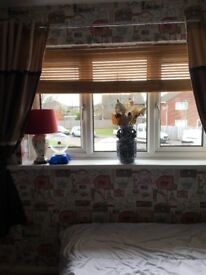 Lovely Double Room in Castlepoint