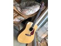 Fender DG-19 Acoustic Guitar with solid happy case