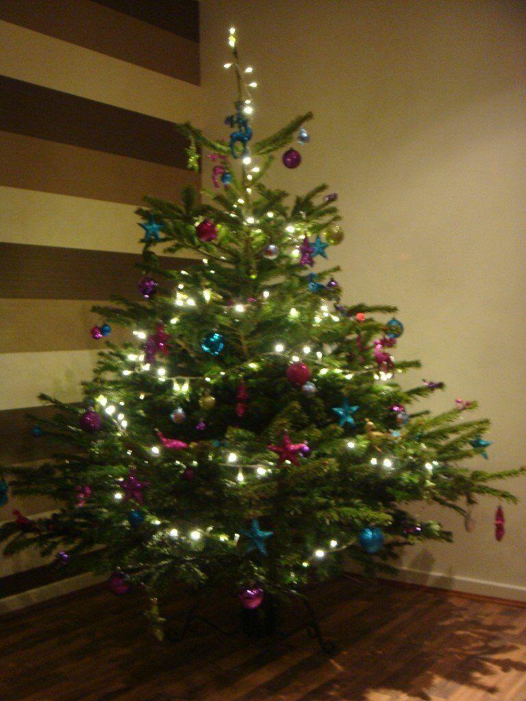 Christmas Decorations  in Pleasance Edinburgh  Gumtree