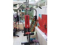 Delta fit home gym