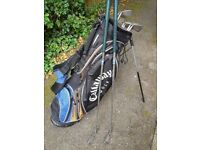 Golf bag and set of irons for sale.
