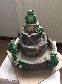 Indoor Frog Fountain