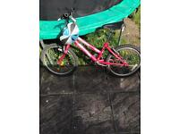 Quicksale, raleigh junior girls bike