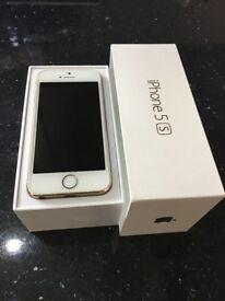 iPhone 5s 16gb Gold Unlocked