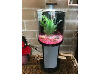 35l tetra fish tank v g c full set up with stand heater light pump lid nice gravel ornament all work