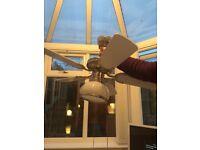 Chrome ceiling fan light white and black