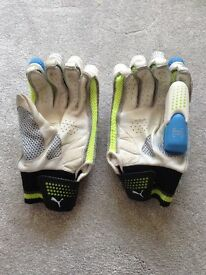 Puma Calibre 5000 Cricket Gloves