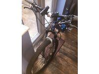 Specialized Rockhopper Adult Mountain Bike in Blue