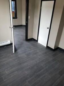 1 bedroom newly renovated apartment for rent Oct 1