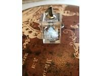Glass Taj Mahal key ring