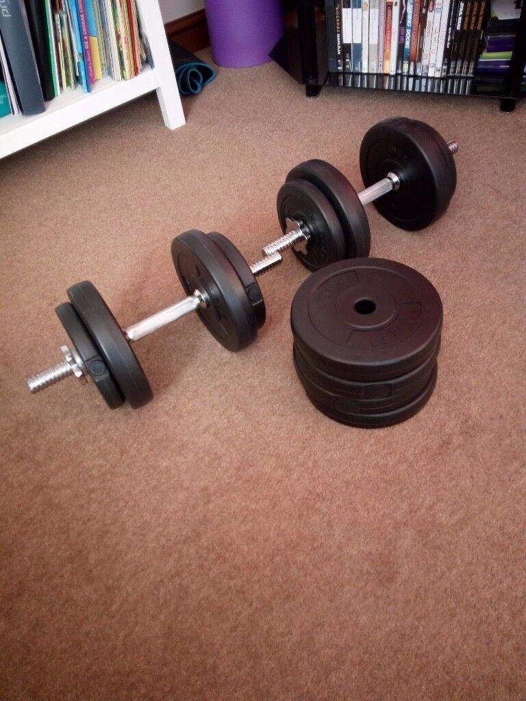 Dumbbell set (25 kg)