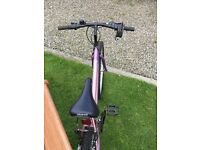 Girls/Ladies Fusion Universal Bike