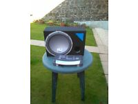 FLI 1200 watt amp and 1000 watt speaker