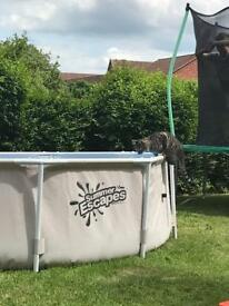 Summer escapes 10ft framed pool and ladder