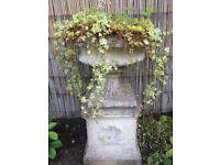 Decorative Stone Garden Urn/Planter on Plinth