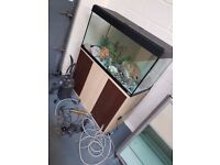 LARGE GLASS FISH TANK WITH STAND AND LOTS OF ACCESSORIES