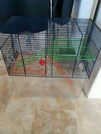 Hamster, guine pig cage