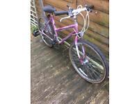 joblot 3 x adult mountain bikes £50