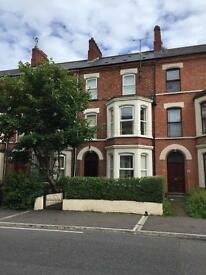 2 Large double rooms in luxury professional house - Great location!!