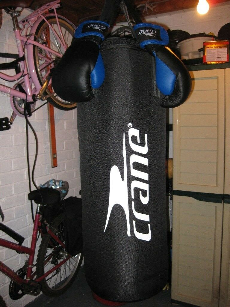 Hardly Used Punch Bag And Gloves