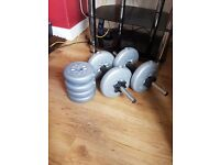 Dumbbells and weights for sale