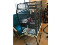 Parrot/bird cage in amazing condition
